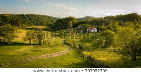 Serbian countryside Stock photo © elenaphoto