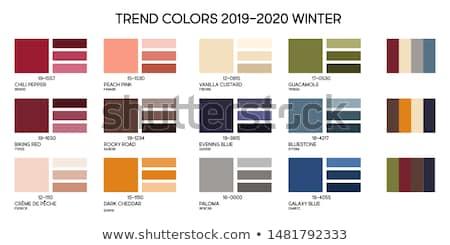 color palette stock photo © gewoldi