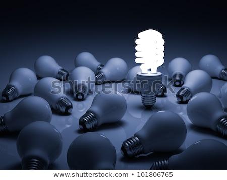 kompakt · fluoreszkáló · villanykörte · fából · készült · modell · villanykörte - stock fotó © devon