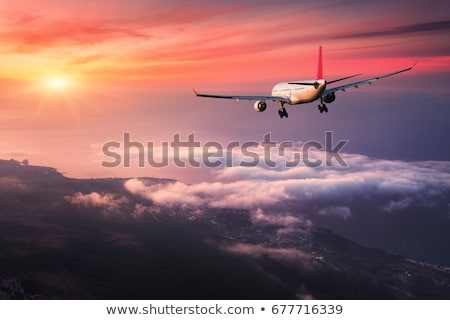 aeroplane in the sunset Stock photo © pedrosala