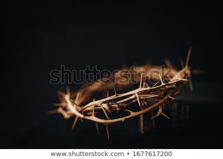 Szerény ima kezek templom istentisztelet Isten Stock fotó © Stocksnapper