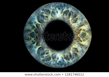 Vision and eye Ball Background Stock photo © Lightsource