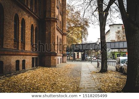 Złoty pozostawia jesienią ulicy budowy tle Zdjęcia stock © meinzahn