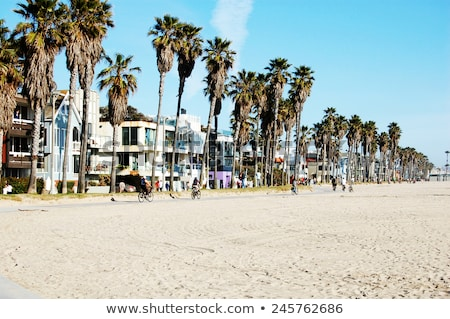 Santa Monica California beach colorful houses Stock photo © lunamarina