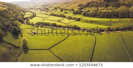 View of the countryside, England Stock photo © jayfish