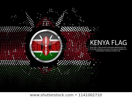 tér · ikon · zászló · Kenya · tükröződés · fehér - stock fotó © dvarg