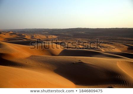 Deserto sera stato d'animo Oman tramonto panorama Foto d'archivio © w20er
