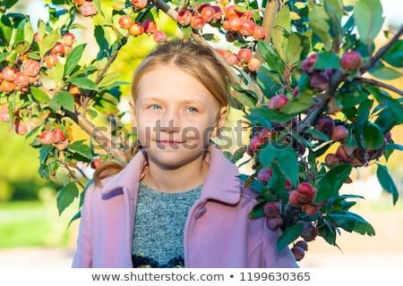 jeunes · Homme · pommier · nature · jardin · beauté - photo stock © nejron