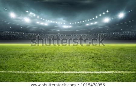 Futballpálya sport háttér mező fehér stadion Stock fotó © rbiedermann