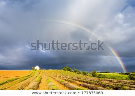 Capilla campo de lavanda arco iris meseta pr edificio Foto stock © phbcz