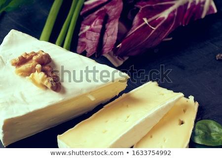 Frescos camembert queso piezas placa Foto stock © Ximinez