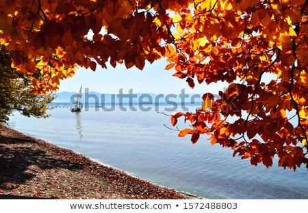 riverside lake Starnberg Stock photo © w20er