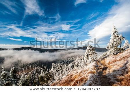hegyek · szép · cseh · ősz · vidék · fű - stock fotó © jonnysek