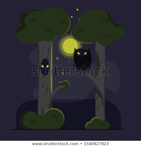 Owl in the hollow. Night, the moon is shining Stock photo © orensila