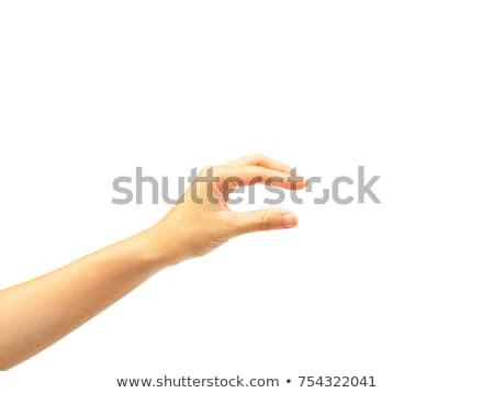 üzletasszony zsákmány valami izolált üzlet nő Stock fotó © fuzzbones0