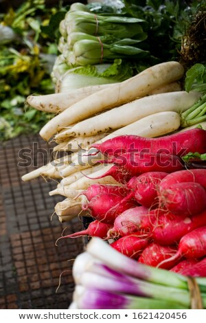 Fresh clean  turnip on the market Stock photo © mcherevan
