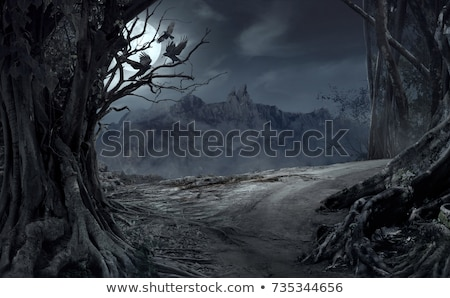 três · floresta · isolado · sol · natureza - foto stock © user_9323633