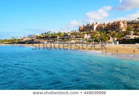 Rocky coast of Tenerife, Canary Islands. Spain Stock photo © amok