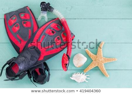 rojo · aislado · blanco · verano · piscina · ejercicio - foto stock © ozgur