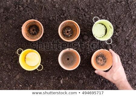 Hand placing empty pots on fresh soil Stock photo © ozgur