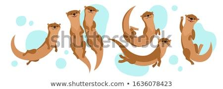 Otter Stock photo © bluering