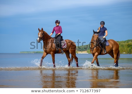 horse rider in the sea Stock photo © cynoclub