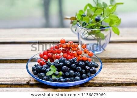 Rowan berries lie on a blue plate Stock photo © Karpenkovdenis