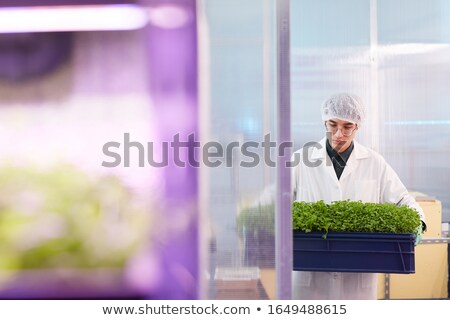 kadın · dışarı · deney · laboratuvar · kız - stok fotoğraf © szefei