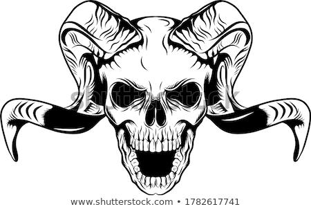 Démon koponya ijesztő illusztráció gonosz ijesztő Stock fotó © blamb