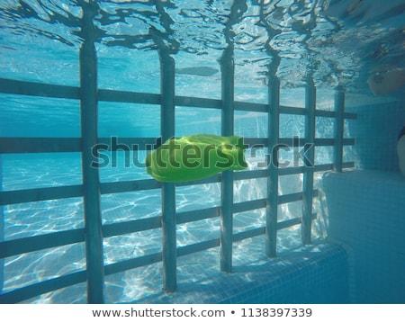 Generic rubber fish toy in swimming pool, underwater view Stock photo © stevanovicigor