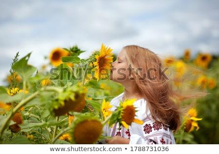 Lány hagyományos ruházat illusztráció gyermek háttér Stock fotó © bluering
