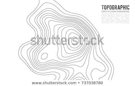 Kolorowy kontur ilustracja streszczenie wzór wykres Zdjęcia stock © SArts