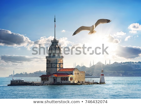 Maiden Tower in Istanbul at day Stock photo © Givaga
