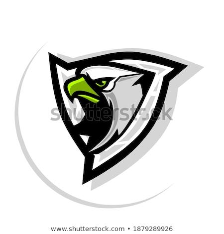 зеленый орел голову Cartoon икона вектора Сток-фото © cidepix