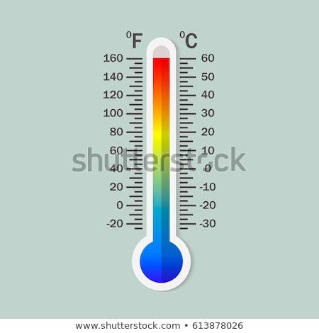 Vecteur celsius météorologie été hiver Photo stock © olehsvetiukha
