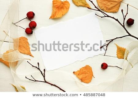 Golden Autumn Notice Stock photo © alexaldo