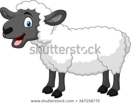 Heureux cartoon moutons illustration regarder Photo stock © cthoman