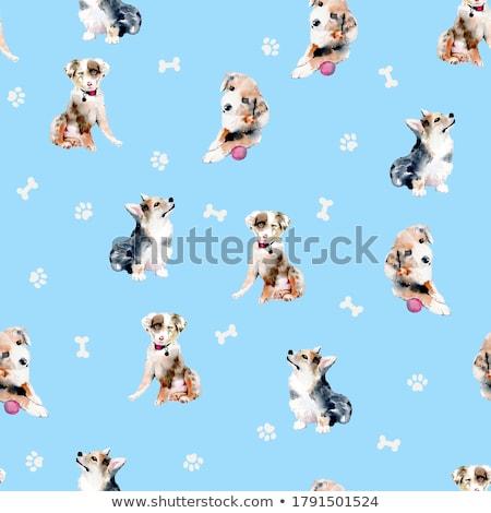 肥満した · 犬 · 実例 · 寝 · 脂肪 · 子犬 - ストックフォト © cthoman