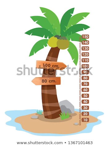 height measurement chart with coconut tree Stock photo © colematt