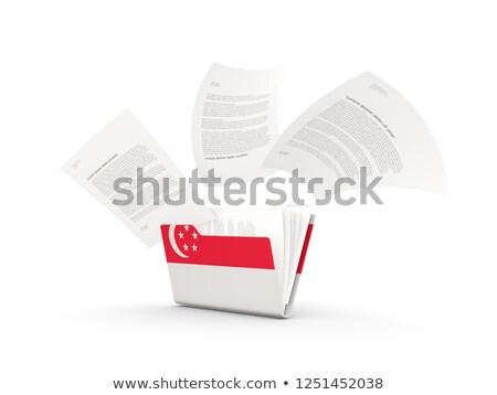 Map vlag Singapore bestanden geïsoleerd witte Stockfoto © MikhailMishchenko