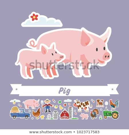 farmer with pig piglet set vector illustration stock photo © robuart