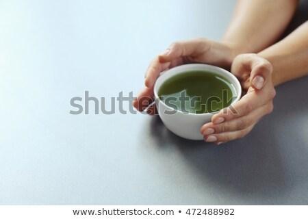 kadın · eller · tablo · yeşil - stok fotoğraf © dashapetrenko