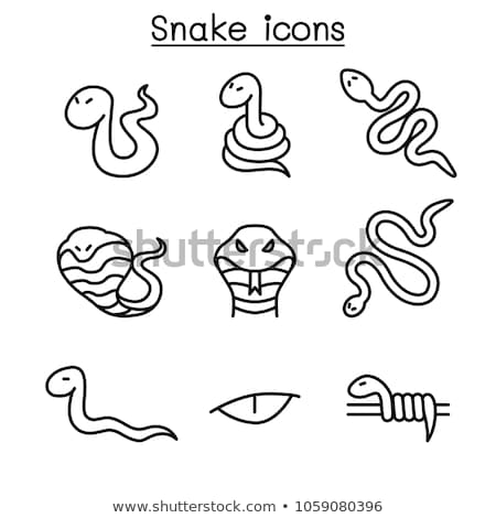 Poisonous creatures concept icons pattern Stock photo © netkov1