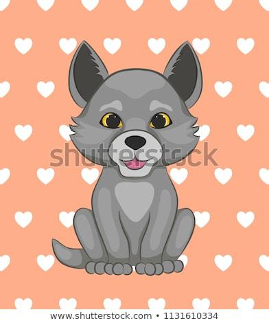 Boldog kicsi farkas rajz illusztráció néz Stock fotó © cthoman