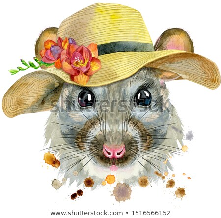 Watercolor portrait of rat with a wide-brimmed summer hat Stock photo © Natalia_1947