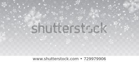 Christmas snow. Falling snowflakes on transparent background. Snowfall. Vector illustration Stock photo © olehsvetiukha