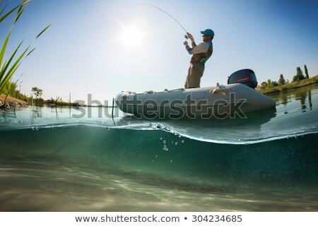 Vízalatti kilátás tó fenék kövek vízi Stock fotó © Mps197