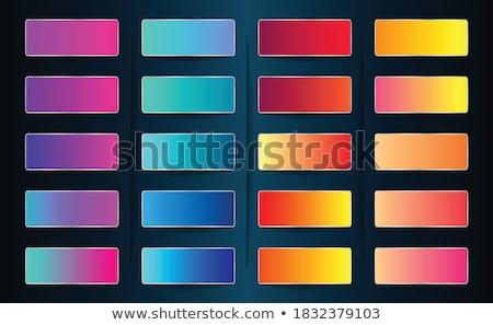 набор красный розовый градиент комбинация веб Сток-фото © SArts