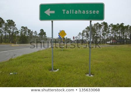 Florida znak autostrady zielone USA Chmura ulicy Zdjęcia stock © kbuntu