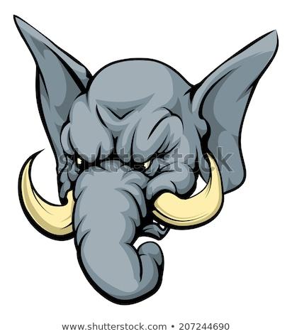 olifant · mascotte · hoofd · vector · grafische · afbeelding - stockfoto © chromaco